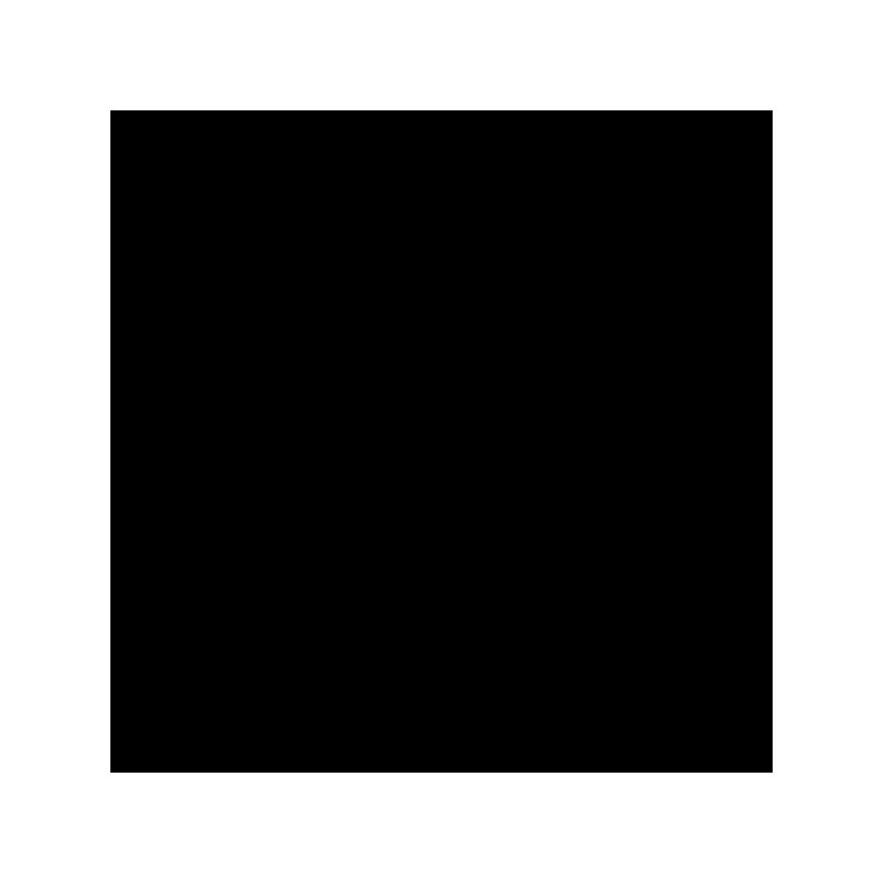Sticker Logo DIOR 15x6cm