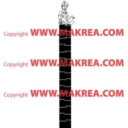 Sticker Règle de croissance Peter Pan