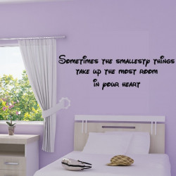 texte : Sometimes the smallesty things take up the most room in your heart