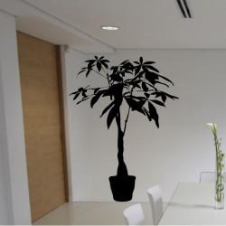 Plante verte en pot Feuilles Hautes