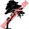Sticker Nature - Arbre Pin Maritime