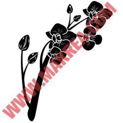 Sticker Nature - Orchidée Fleurs et boutons