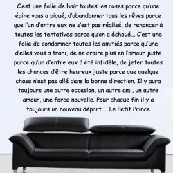 Texte : Extrait le Petit Prince