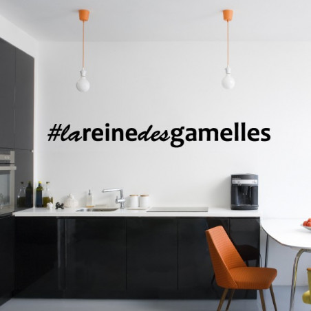 Hashtag La Reine Des Gamelles