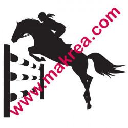 Equitation Cheval Saut d'obstacle