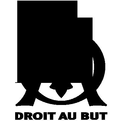 Sticker Logo Olympique de Marseilles