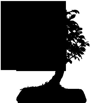 Sticker Bonzai Zen 2